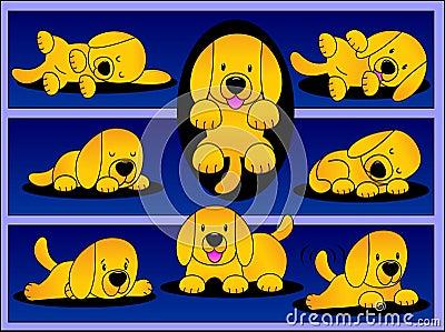 Playful Labrador Pup.