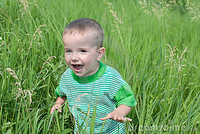 Playful little boy in the grass