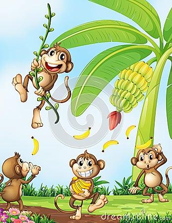 Free Playful Monkeys Near The Banana Plant Royalty Free Stock Images - 43722089