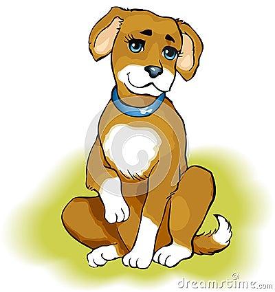 Playful puppy