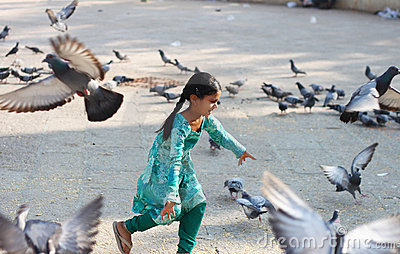 Playful young child with pigeons Editorial Photography