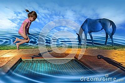 Playground of Dreams