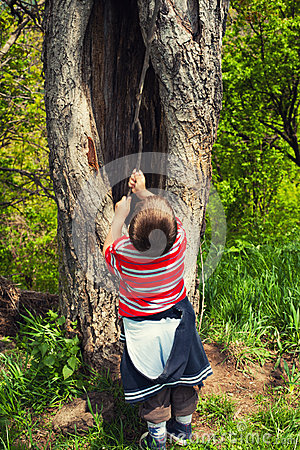 Playing near old tree