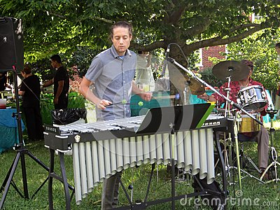 Playing the Xylophone Editorial Photography