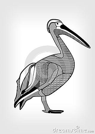 P lican dessin noir et blanc d 39 oiseau d 39 eau avec les for Oiseau gris et blanc