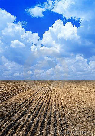 Free Ploughed Field. Royalty Free Stock Image - 9410966