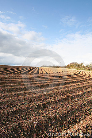 Free Ploughed Field Furrows Stock Images - 695694