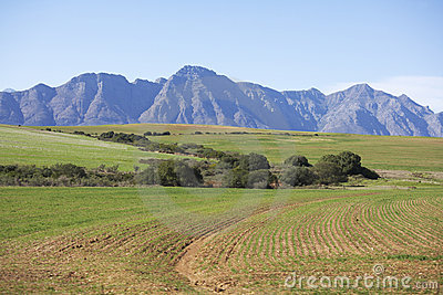Ploughed fields in the Western Cape