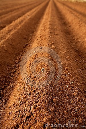 Free Ploughed Red Clay Soil Agriculture Fields Stock Photos - 9297423
