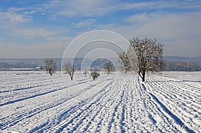 Plow under snow