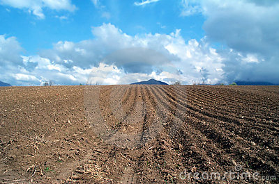 Plowed land Stock Photo
