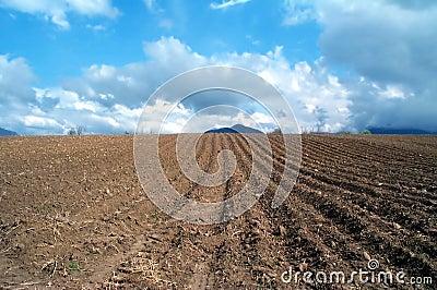 Plowed land Stock Photo