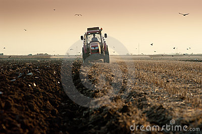 Plowing at dusk
