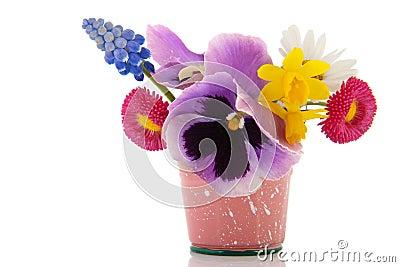 Plucked garden flowers