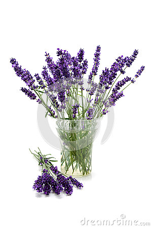 Plucked lavender in glass vase