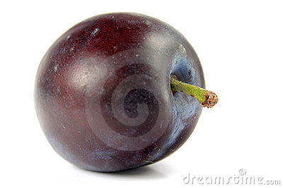 Plum isolated