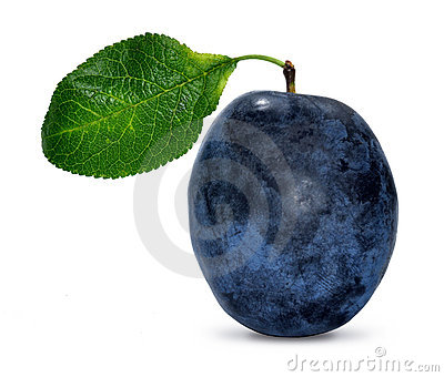 Plum with leaf
