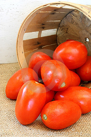 Free Plum Tomatoes And Farm Basket Stock Photography - 6339832