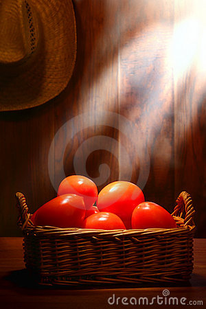 Plum Tomatoes on Old Country Farm Stand Wood Table