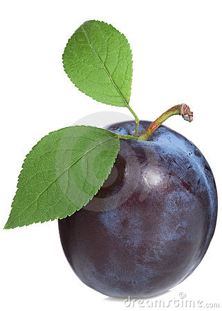 Free Plum With Leaf Stock Image - 15435971