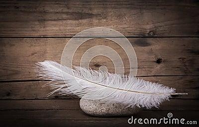 Plume blanche et une pierre sur le fond fonc en bois pour for Tache blanche sur bois fonce