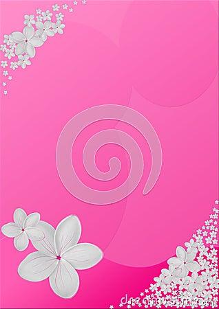 Plumeria Design