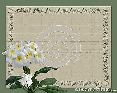 Plumeria floral border