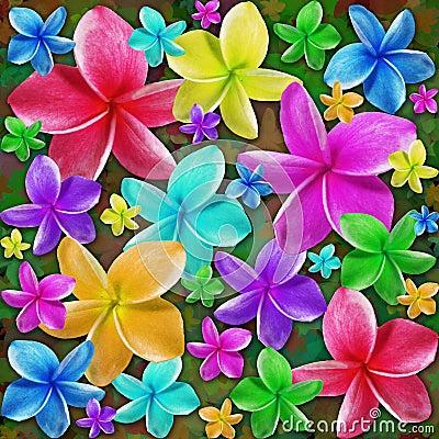 Free Plumerias Exotic Flowers Dream Royalty Free Stock Photo - 61126325