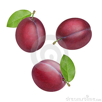Free Plums Royalty Free Stock Image - 20776186