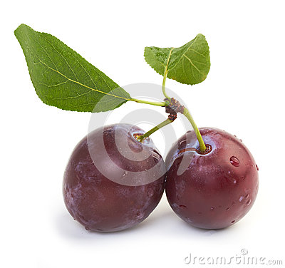 Free Plums Stock Images - 26285184
