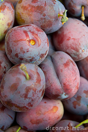 Plums on pile