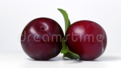 Plums rotating on white. Background stock footage
