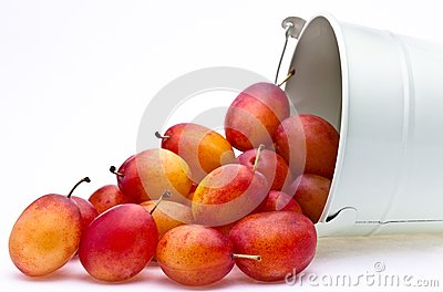Plums spilling from a container
