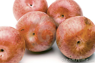 Pluots fruit hybrid plum and apricot