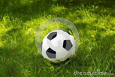 Plush football ball
