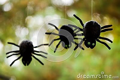 Plush Spiders