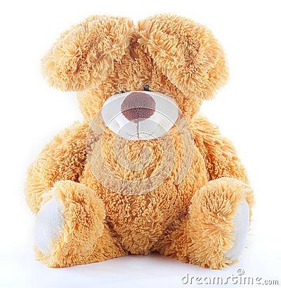 Free Plush Toy Rabbit Royalty Free Stock Images - 26894069