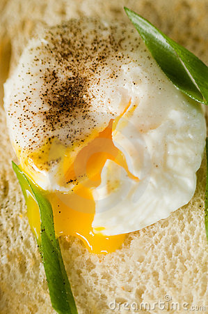 Free Poached Egg Stock Images - 10900674