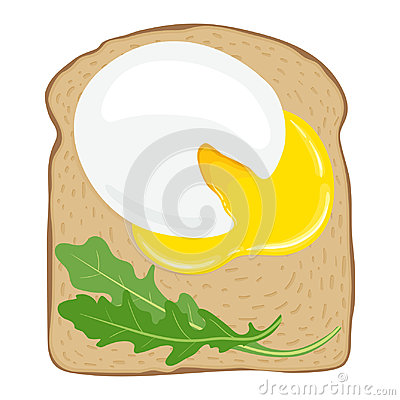 Poached eggs on toast bread. Delicious poached egg sandwich with toast bread. Vector illustration. Vector Illustration