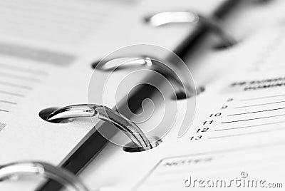 Pocket business  planner