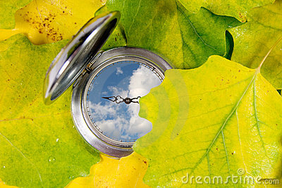 Pocket watch and autumn leaves