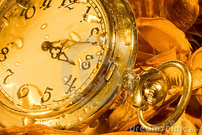 Pocket watch and dry leaves