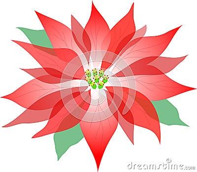 Poinsettia/ai