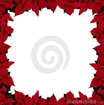 Poinsettia frame (square)