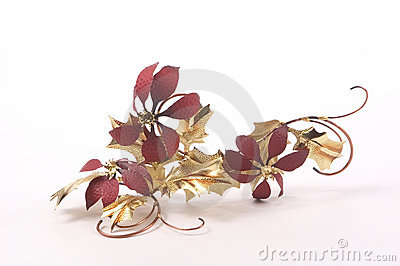 Poinsettias della stagnola