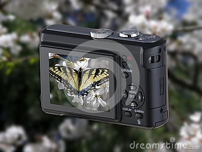 Point & Shoot Camera with butterfly