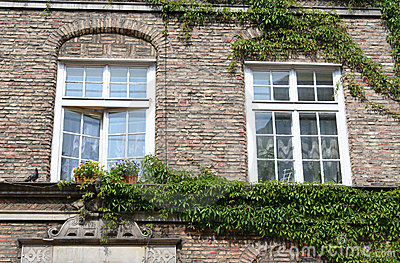 Poland. Gdansk city. Windows
