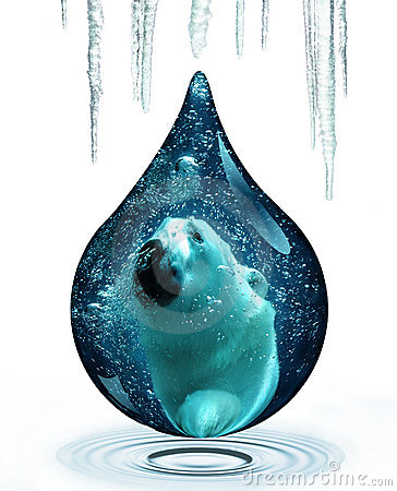 Free Polar Bear And Climate Change Stock Photos - 7292643