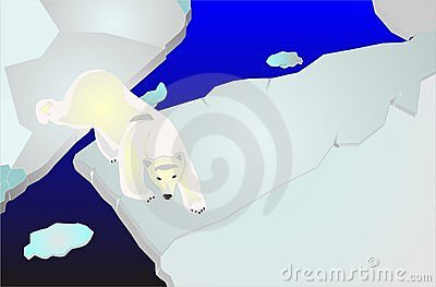 Polar bear on icepack walking illustration