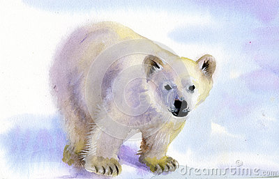 Polar bear in snow
